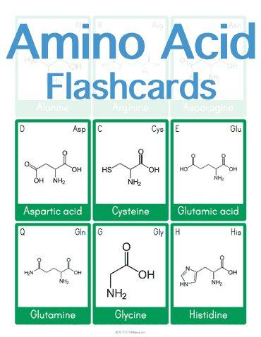 Understanding Amino Acid Side Chain Characteristics for the MCAT - amino acid chart