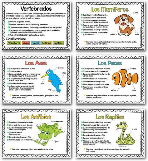 Carteles De La Clasificación De Los Animales Vertebrados Láminas Para Presentación De Lo Vertebrados Caracteristicas De Los Animales Clasificación De Animales