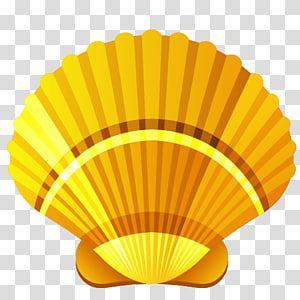 Brown Clam Shell Illustration Seashell Cartoon Cartoon Shells Transparent Background Png Clipart Seashells Cartoon Clip Art Balloon Illustration