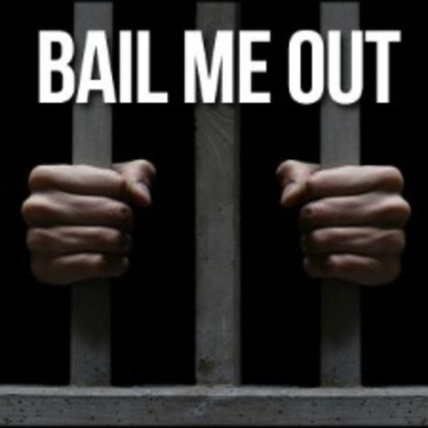 110 best Bail Bonds images on Pinterest Bail bondsman, Bond and - bail agent sample resume
