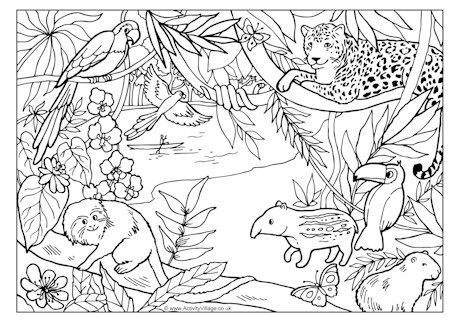 This Lovely Rainforest Colouring Page Has Lots Of Detail That Will Keep Older Children Intereste Jungle Coloring Pages Animal Coloring Pages Rainforest Animals