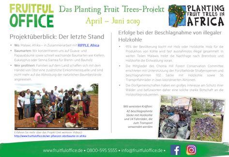 Planting Fruit Trees Update - Q2  Fruitful Office veröffentlicht jedes Quartal Informationen über die Erfolge desPlanting Fruit Trees-Projektsvon RIPPLE Africa, dasmit der Hilfe der Kunden unterstützt wird. Denn: Für jeden verkauften Obstkorb wird in Malawi ein Baum gepflanzt. Besonders im Norden des Landes werden sodie Umwelt- und Lebensbedingungen voneiner Vielzahl an Menschen verbessert. Wir danken all unseren Kunden, die durch den Verzehr unserer frischen
