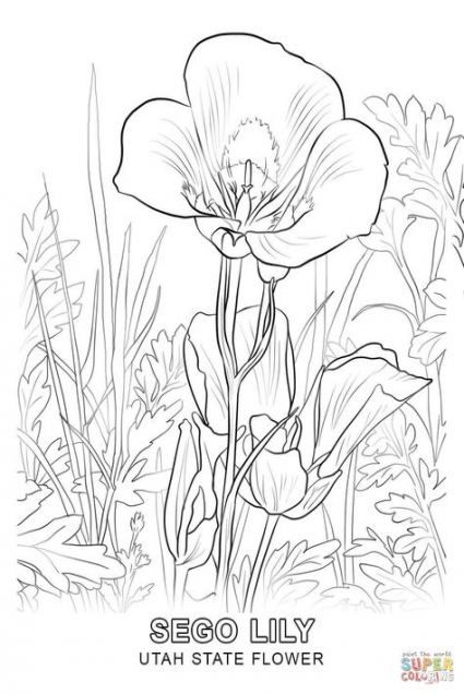16 Ideas Flower Tree Sketch Coloring Pages Tree Flower Coloring