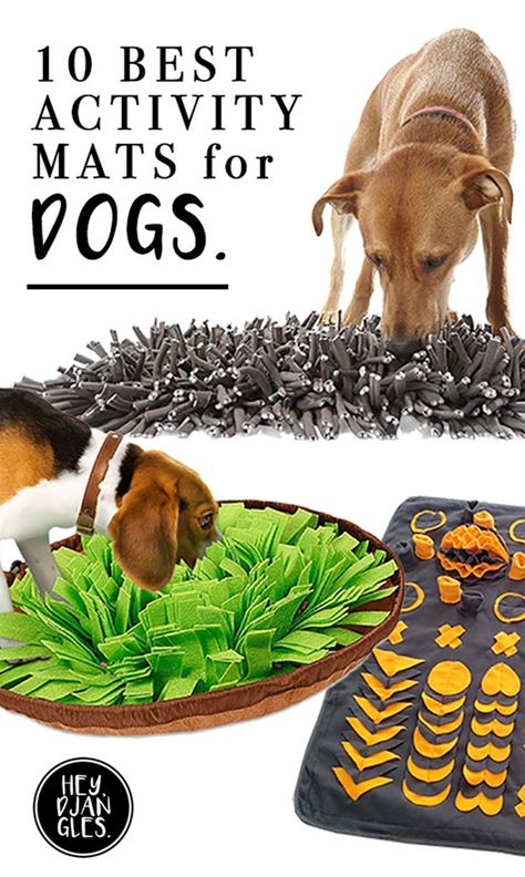 10 Best Boredom Busting Activity Mats for Dogs - Hey, Djangles. Diy Dog Toys, Best Dog Toys, Pet Toys, Toys For Dogs, Best Dog Gifts, Cute Dog Toys, Best Dogs, Brain Games For Dogs, Dog Games