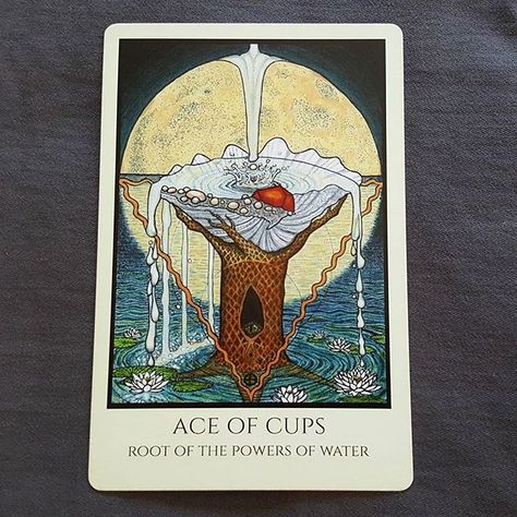 Love 💙  #tabulamunditarot #tabulamundi #aceofcups #rootofthepowersofwater #mmmeleen #tarot #tarotcards #tarottidbits #tarotbyleeann #cards #love #cups #ace #intuitive #intuitivereadings #divination #water #art #grail #psychic #tarotreadings #ocean #qabalah
