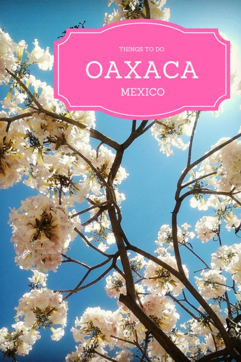 "Oaxaca City has the perfect combination of Mexican culture and modern amenities. Check out this list for some inspiration when spending some time in Oaxaca including the ""petrified waterfalls"", Zapotec ruins and worm salt!"