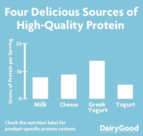 From avid athletes to aging adults, everyone benefits from protein. Dairy foods deliver high-quality protein to help maintain health and fitness goals.
