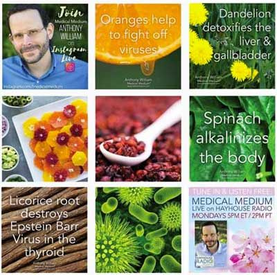 How Celery Juice Helps Heal Eczema & Psoriasis in 2019   Eczema