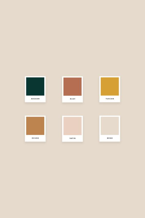 Pre-made Branding Package: Wholesome Palette Pantone, Pantone Color, Colour Pallette, Colour Schemes, Orange Color Palettes, Best Logo Design, Brand Design, Brand Guidelines, Colour Board