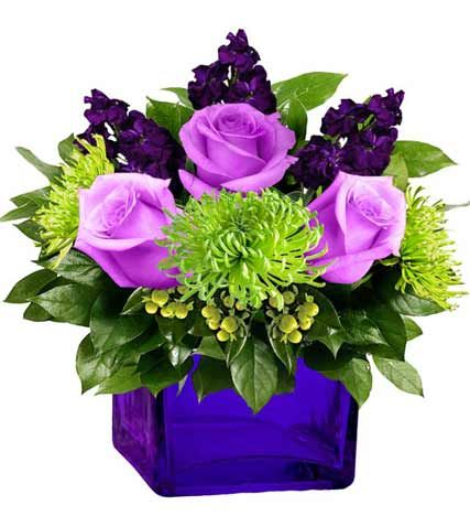 Everlasting Soothing Lavender