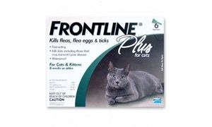 Frontline Flea Control Plus For All Cats And Kittens 6 Month