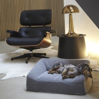 Miacara Dog Sofa Luna Heather Grey Puppy Sofa Dog Rooms Dog Sofa