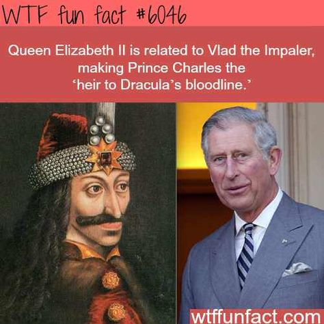 Prince Charles is expounded to Vlad the Impaler – WTF enjoyable info – didyouknow. Interesting Information, Interesting History, Interesting Facts, Awesome Facts, Funny Facts, Funny Memes, Random Facts, Funny History Facts, History Weird
