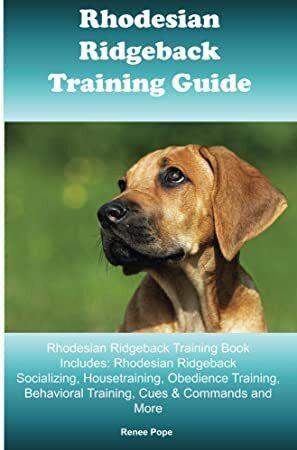 Kindle Rhodesian Ridgeback Training Guide Rhodesian Ridgeback Training Book Includes Rhodesian Ridgeback Socializing Housetraining Rhodesian Ridgeback Dog Training Tips Train