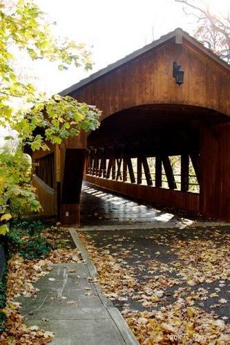 Charles A. Harding's Memorial Covered Bridge, built in 1998 by Amish craftsmen to replace the old steel bridge over Plum Creek. Several Kingpost truss. Length is 92 ft. Nearby cities are Cleveland, Ohio, City of Leamington, Ontario, City of Essex, ON - #bridge #built #charles #covered #harding #memorial - #bridge #built #charles #covered #harding #memorial