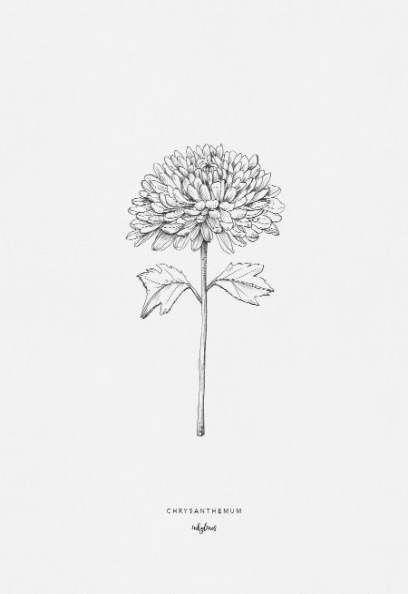 26 Ideas Flowers Ilustrations Simple Ink Tattoo Ink Master Tattoos Brown Tattoo Ink