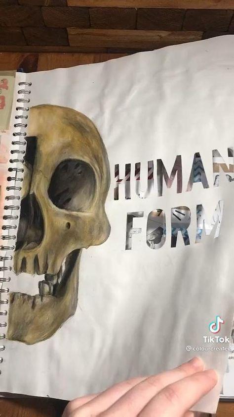 #art #coursework #gcse #gcseart #igcse #igcseart #anatomy #bones