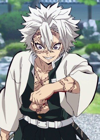 Sanemi Shinazugawa Anime Demon Slayer Kimetsu No Yaiba Birthday November 29 Anime Demon Slayer Anime