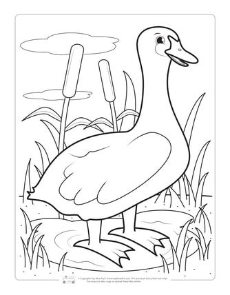 Birds Coloring Pages For Kids Coloring Pages Bird Coloring