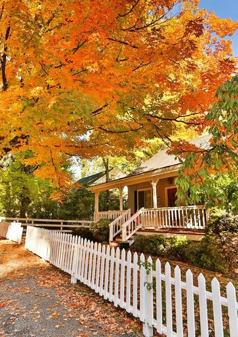 This Fall Foliage Tour Through A Victorian Village In Northern California Is Absolutely Magical Victorian Village, October Country, Autumn Aesthetic, City Aesthetic, New England Fall, Autumn Scenery, Autumn Cozy, Northern California, Nevada City California