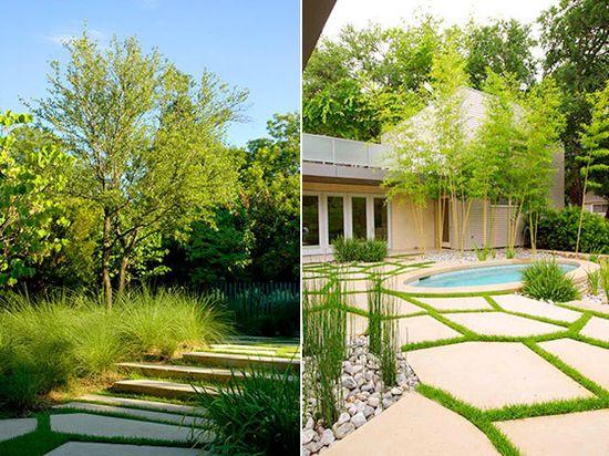 modern garden design landscaping hocker plants. Lower yard.