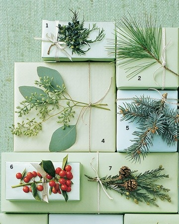 Botanical gift wrap for holiday packages! Love! Brown paper bag for wrap might give a nice rustic flare also!