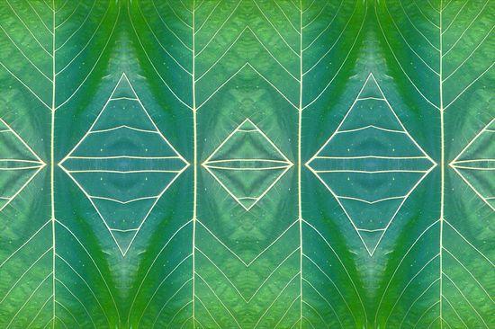 Love Leaves - Digita