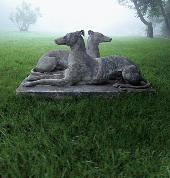 stone whippets in the mist....