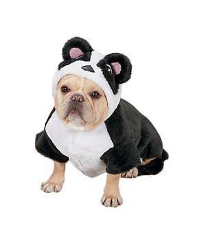 Halloween Costumes for Pets: Panda Pup #costume