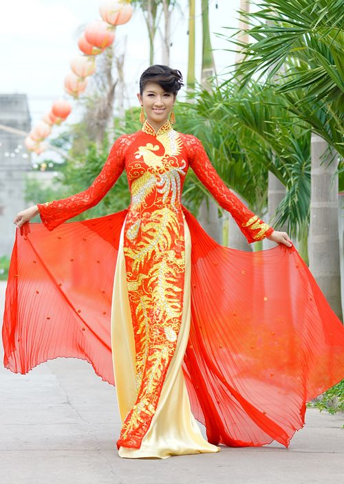 amazing looking wedding dress - Vietnamese Ao Dai (Long Dress)