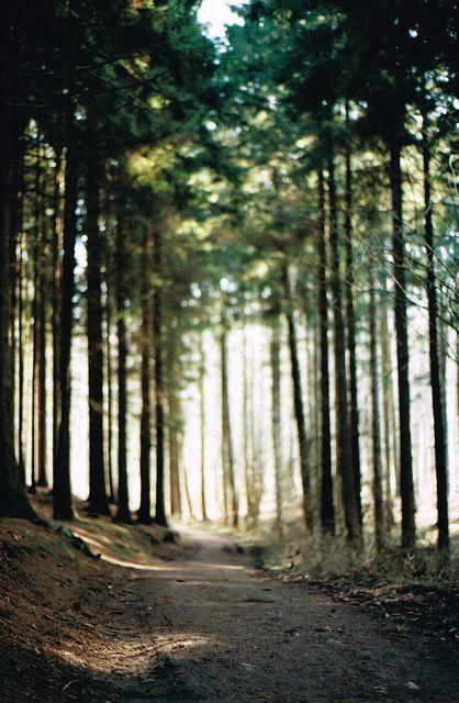 {Hike.}