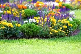 flower bed idea 2