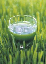 Superfoods 3. Wheatgrass