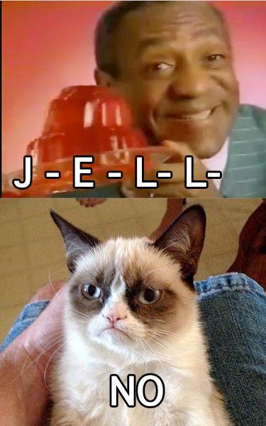 angry cat meme no - photo #32