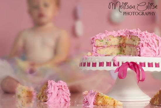 Melissa Calise Photography (1st Birthday First Cake Smash Girl Pink Photoshoot Ideas)