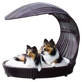 """Woven outdoor pet chaise with an arched shade. Product: Pet chaiseConstruction Material: Faux rattan and fabricColor: Espresso and beigeFeatures: Includes thick cushion with pillow topDimensions: 37.5"""" H x 34.5"""" W x 28"""" D"""