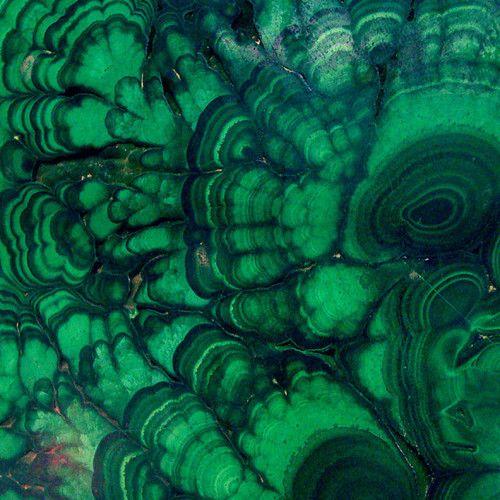#coloroftheyear Pantone Emerald