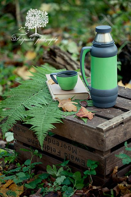 Happy Weekend! by loretoidas, via Flickr... reading in the woods picnic:  thermos, mug, book, fern, and a crate for a table