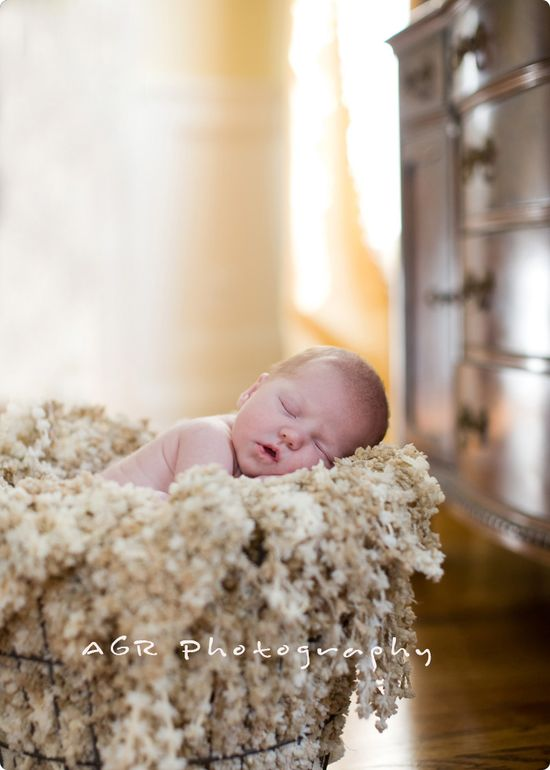 styles of newborn photography