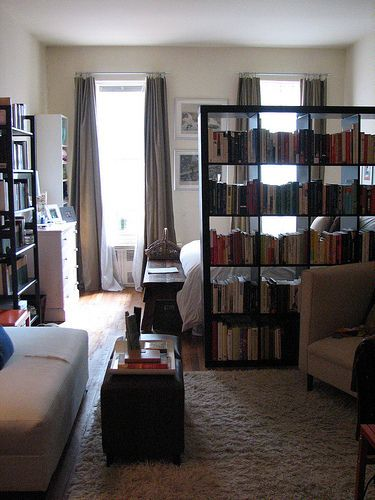 Partition with a huge bookcase-my parents used this technique in their finished basement apartment and it works great