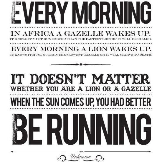 It doesn't matter whether you are a lion or a gazelle – when the sun comes u