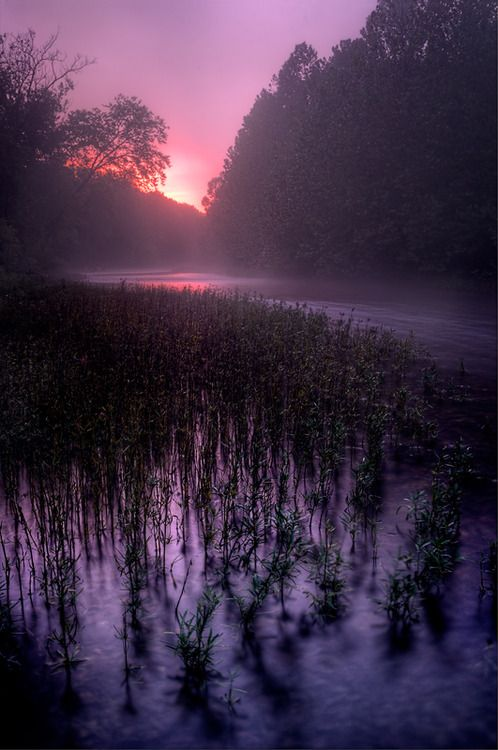 ♥♥      Dawn Mist By Robert Charity #Photography #Beautiful #Places