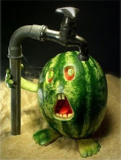 FOOD FUN - Very Funny Things To Do With Your Food!