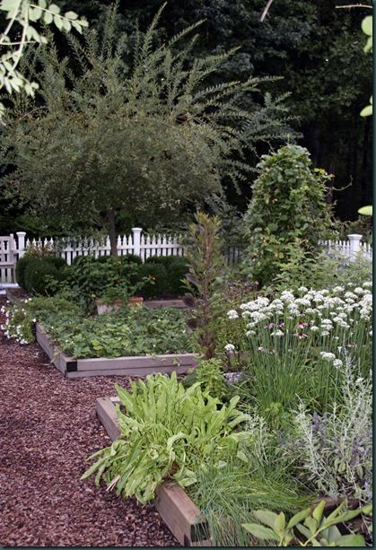 Herb Garden  love this garden lots of ideas at the site