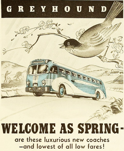 A vintage Greyhound bus was as welcome as spring! #vintage #travel #ads #1930s