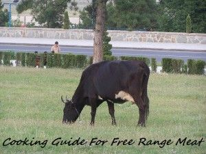 A cooking guide for Free Range Meat