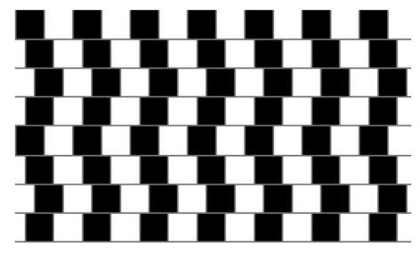 Optical illusions for Webelos Scientist Activity Pin