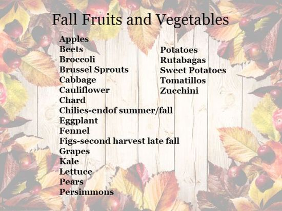 { fall foods for health }