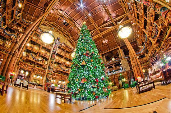 Disney's Wilderness Lodge Review - Disney Tourist Blog