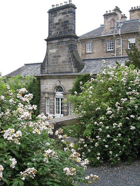 Inspired English Garden.